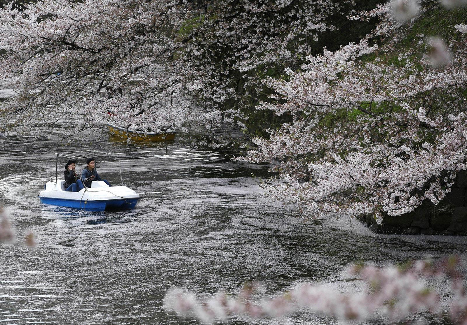 лодка в Токио