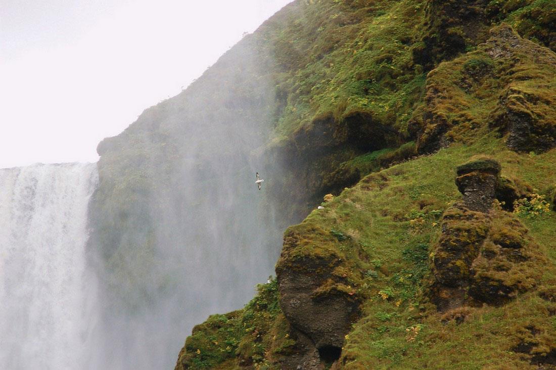 водопад на юге Исландии