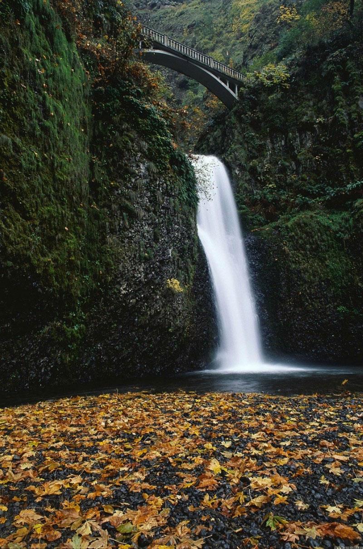 Малтнома в штате Орегон