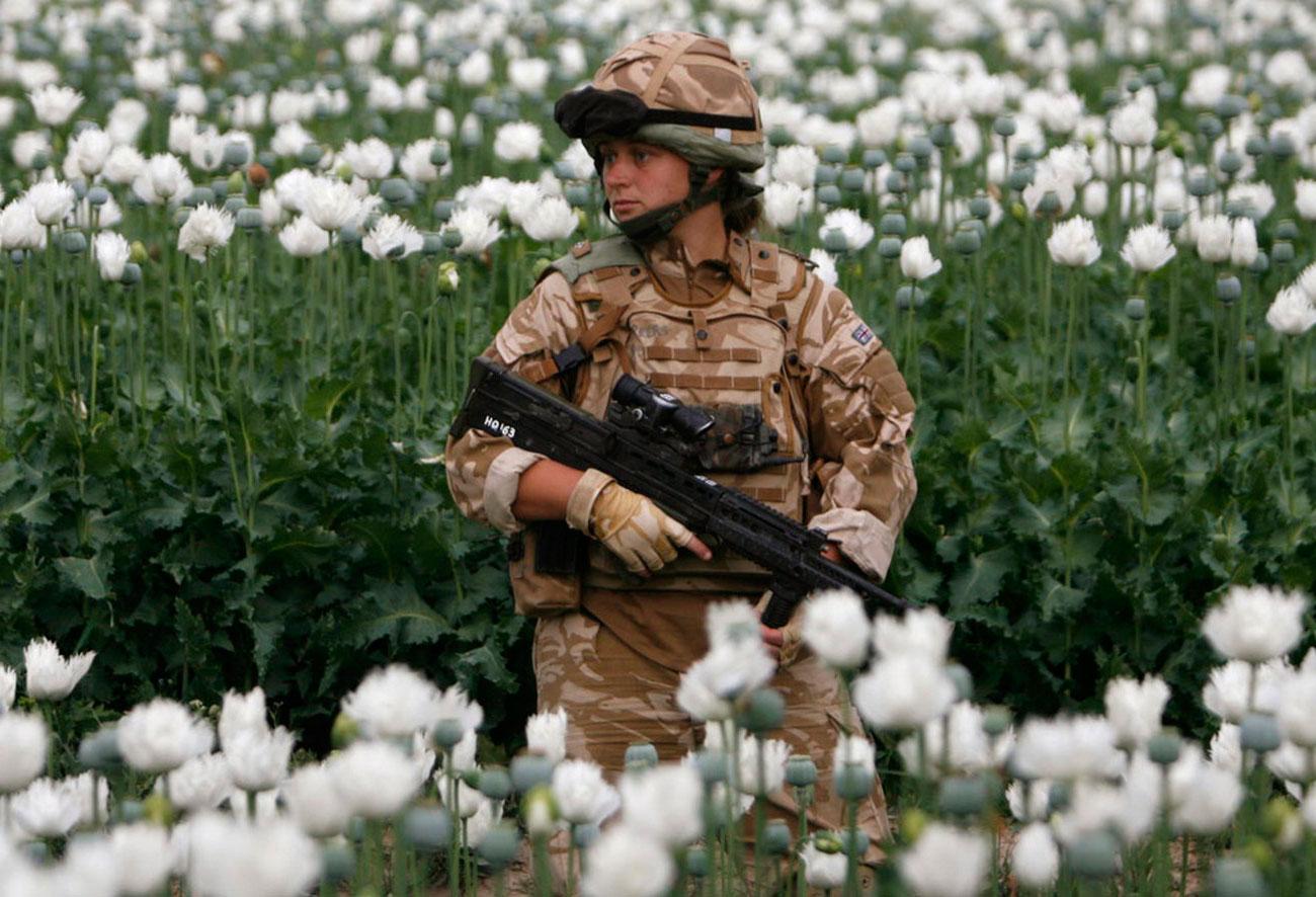 патрулирование по маковому полю в поисках талибов, фото войны