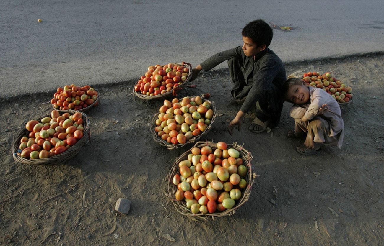 Мальчики продают помидоры в Пакистане