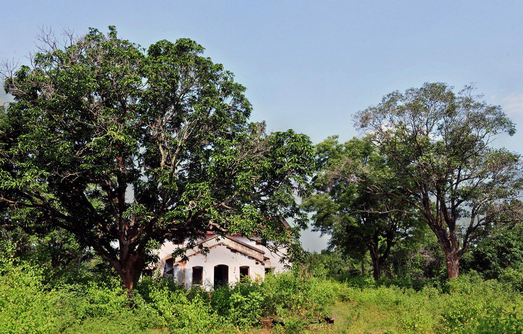 индийский колониальный особняк, фото