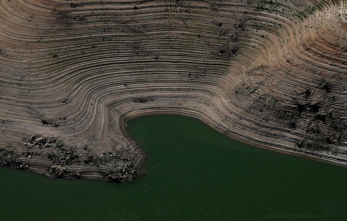Кольца на берегу озера