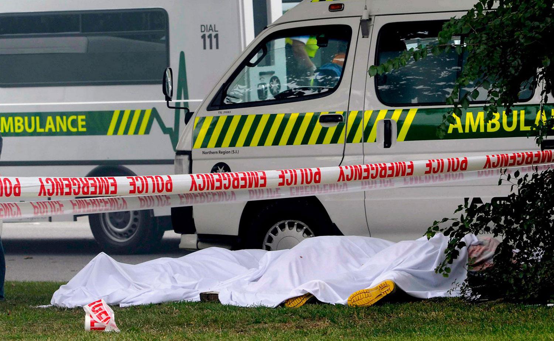 жертвы землетрясения, фото Новой Зеландии