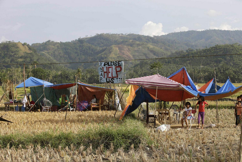временные жилища на рисовом поле
