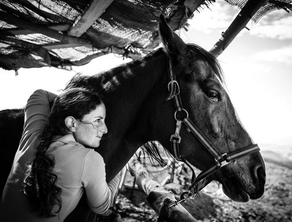 лошадь с наездницей