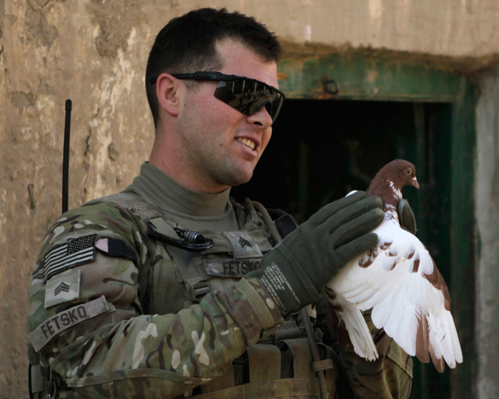 солдат с голубем, фото
