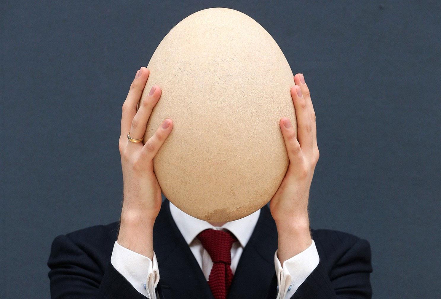 окаменелое яйцо
