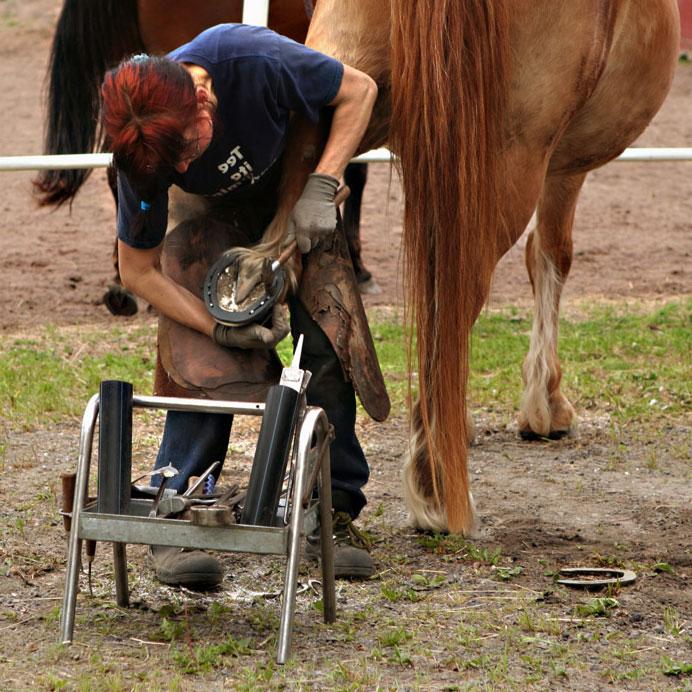 ковка лошади
